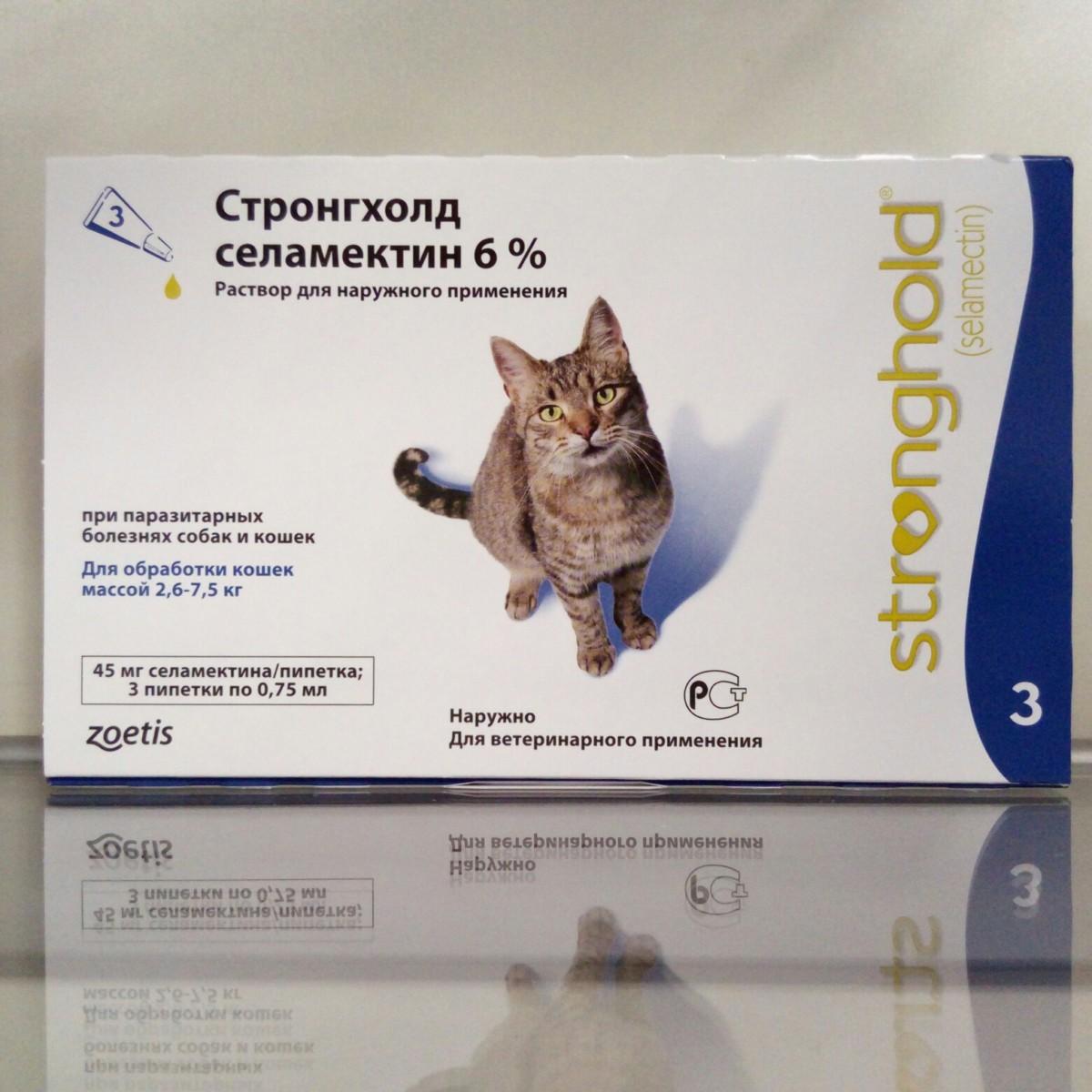 стронгхолд для котят картинки внешний вид